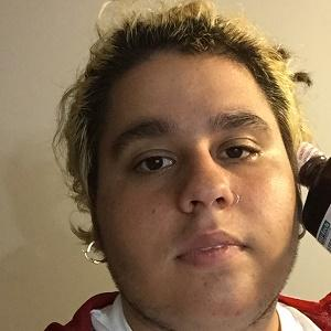 Fat Nick Real Phone Number Whatsapp