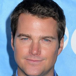 Chris O'Donnell Real Phone Number Whatsapp