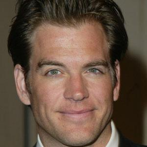 Michael Weatherly Real Phone Number Whatsapp