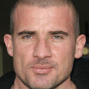 Dominic Purcell Real Phone Number Whatsapp