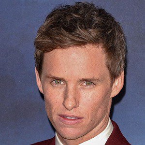 Eddie Redmayne Real Phone Number Whatsapp